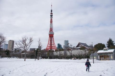 雪が積もった芝公園から東京タワー.JPG