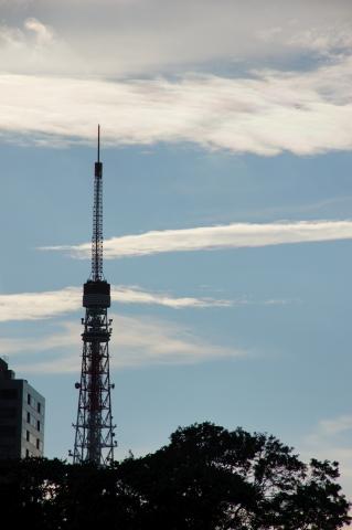 東京タワーと彩雲
