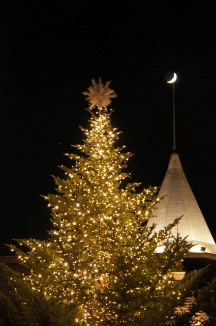 クリスマスツリーと月と火星