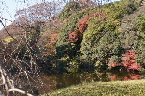 道灌濠と紅葉