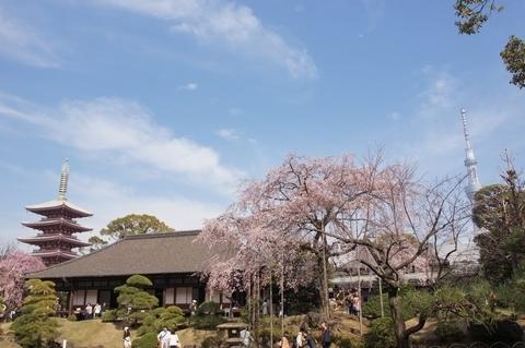 伝法院庭園