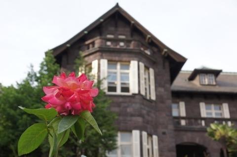 朝雲という名の薔薇と洋館