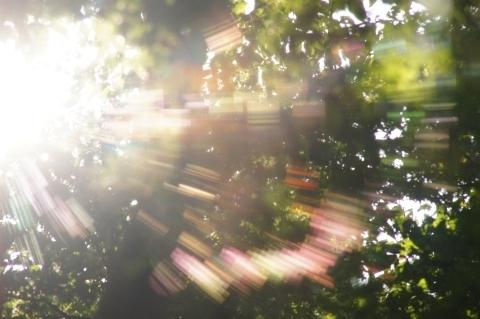 虹色クモの巣3