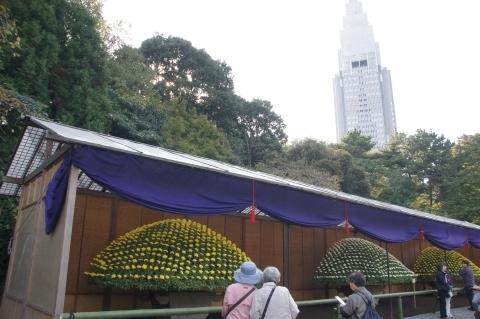 大菊花壇の後ろのドコモタワー
