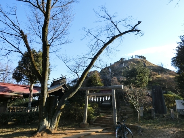 荒幡浅間神社裏から荒幡富士