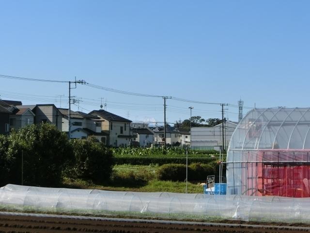 富士山遠景1