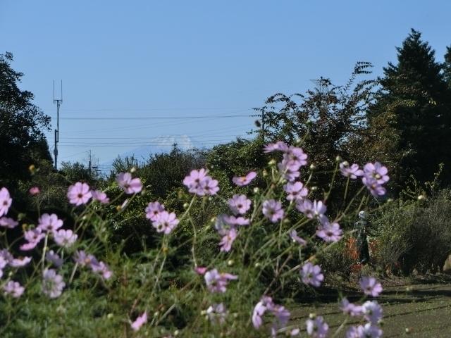 富士山遠景6