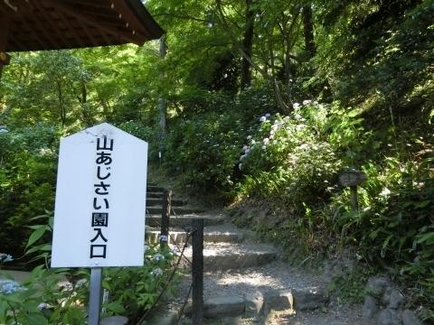 山あじさい園入り口