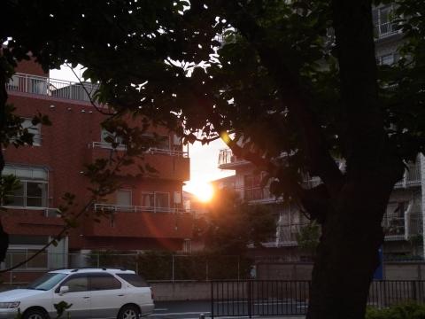 雨降り中の夕日