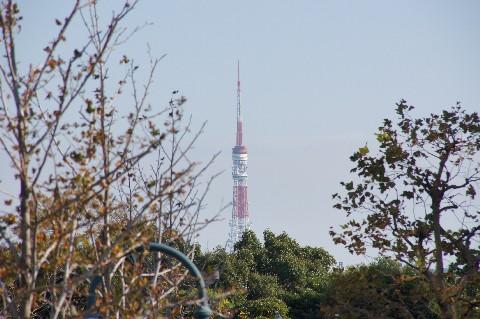 恵比寿で東京タワー