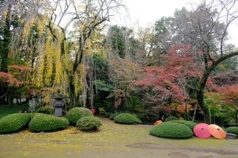紅葉山庭園2