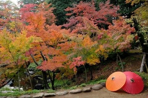 紅葉山庭園の紅葉