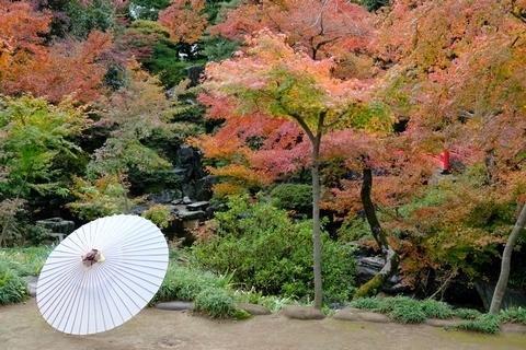 紅葉山庭園の紅葉2