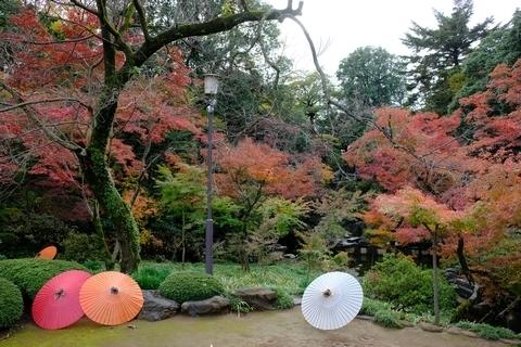 紅葉山庭園3