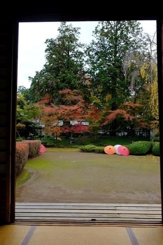 額縁の紅葉山庭園の紅葉1