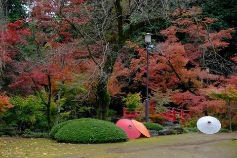 紅葉山庭園の紅葉4