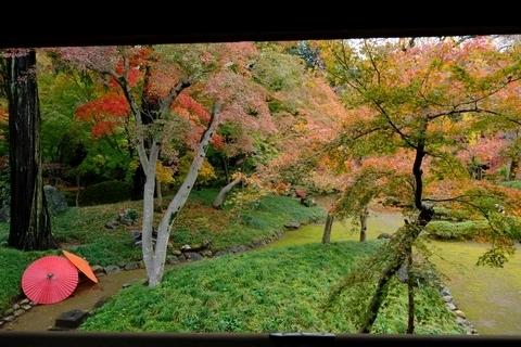 渡り廊下から紅葉