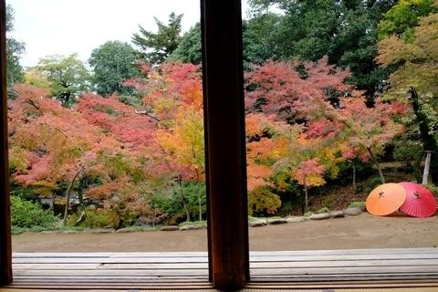 額縁の紅葉山庭園の紅葉3