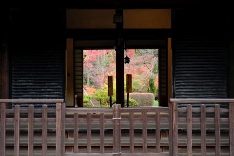 玄関越しの紅葉山庭園の紅葉2