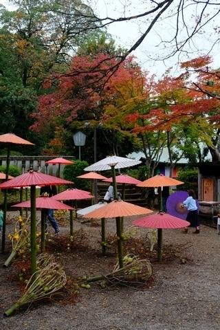 和傘と紅葉2