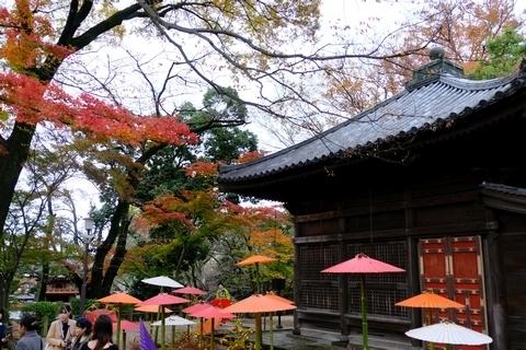和傘と紅葉3