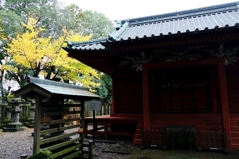 仙波東照宮拝殿と黄葉