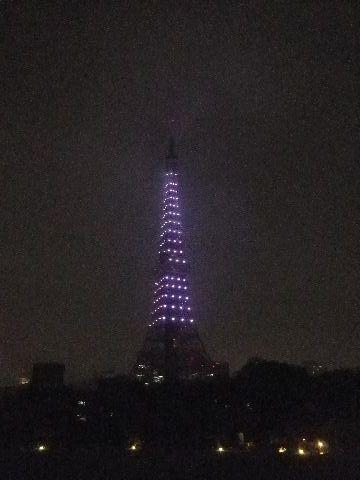 哀悼の光の東京タワー全景