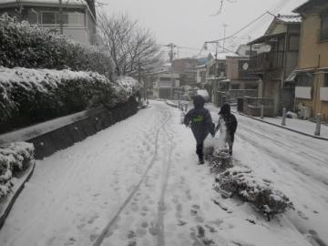 雪にはしゃぐ