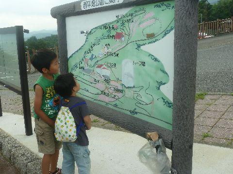 地図を見る二人