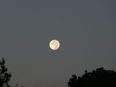 満月の表情
