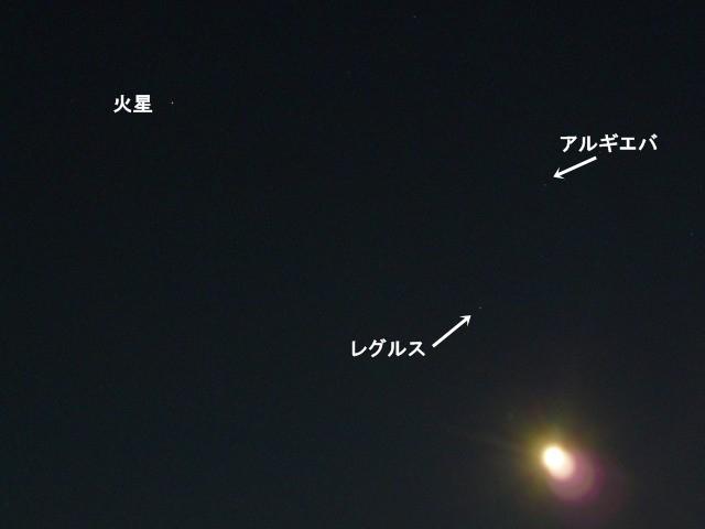 星たちと居待月