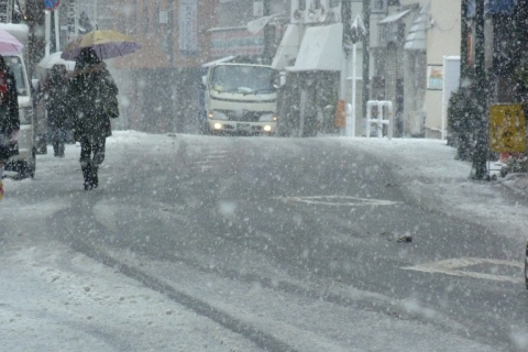 しっかりと降る雪