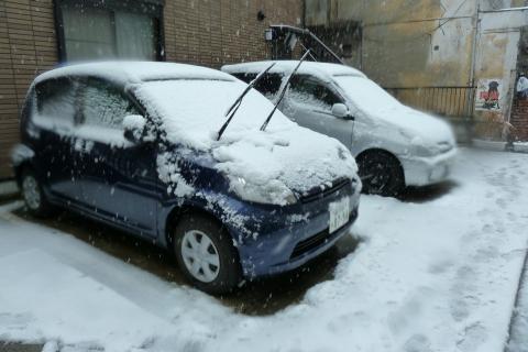 車も雪化粧