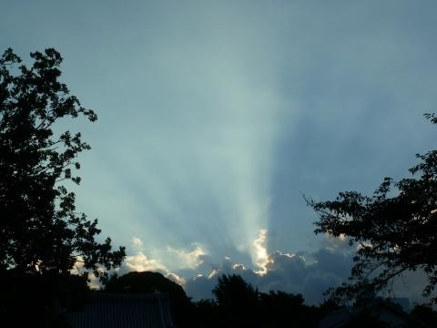 薄明光線を放つ入道雲