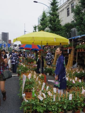 朝顔市と東京スカイツリー2