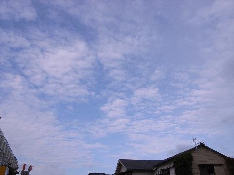北の空のうろこ雲