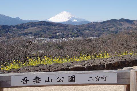 公園の銘板と富士山