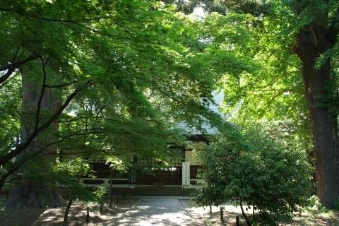 九品仏浄真寺・中品堂