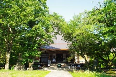 九品仏浄真寺・本堂