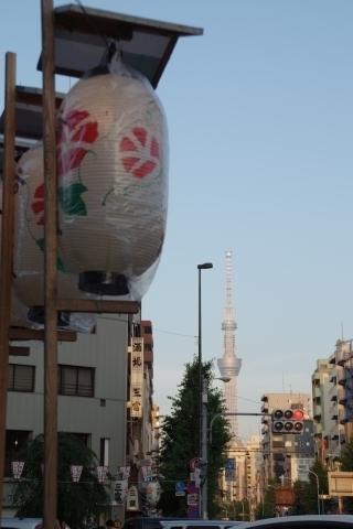 提灯と東京スカイツリー