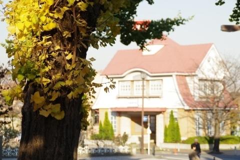 旧駅舎とイチョウ