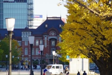 イチョウと東京駅4