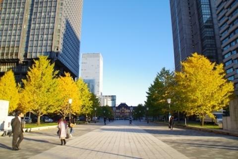 ビルに挟まれたイチョウと東京駅