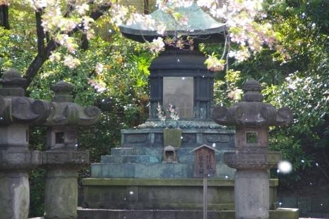徳川霊廟内の文昭院殿(六代将軍家宣公)夫妻宝塔と桜吹雪