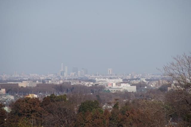 比良の丘の眺望