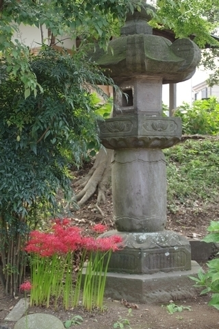 有章院霊廟の石灯籠と彼岸花