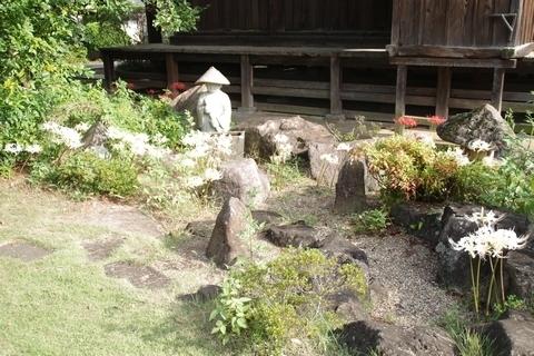 佛蔵院勝楽寺の彼岸花1
