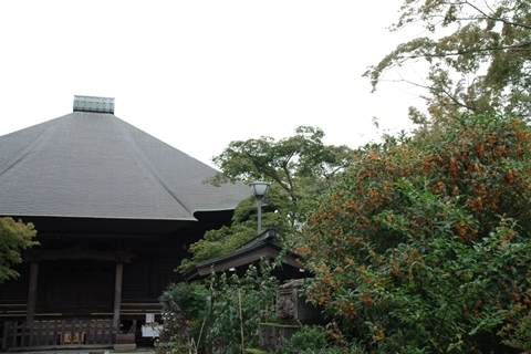 毘沙門堂と金木犀