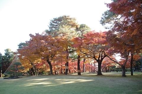 殿ヶ谷戸庭園の紅葉1