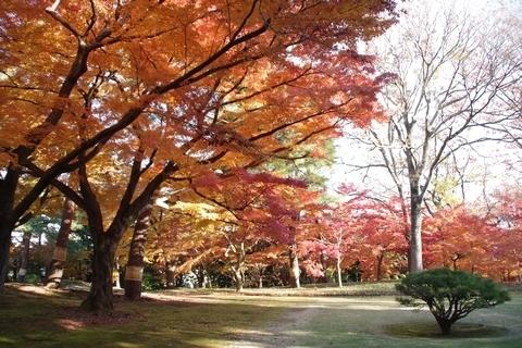 殿ヶ谷戸庭園の紅葉2